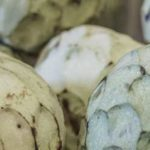 Can Guinea Pigs Eat Cherimoya?