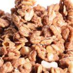 Can Chinchillas Eat Granola?