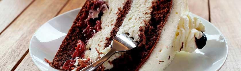 Can Gerbils Eat Cake?