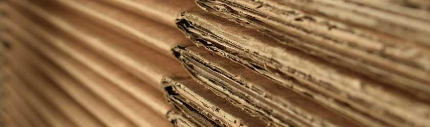 Can Gerbils Eat Cardboard?