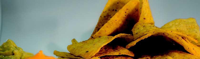 Can Gerbils Eat Doritos