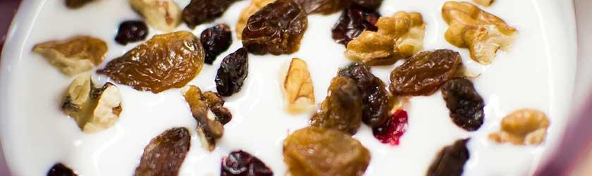 Can Hamsters Eat Yogurt Covered Raisins?