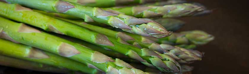 Can Rabbits Eat Asparagus Ends?