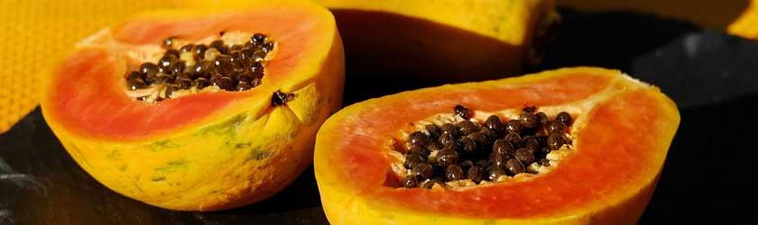 Can Chinchillas Eat Dried Papaya?