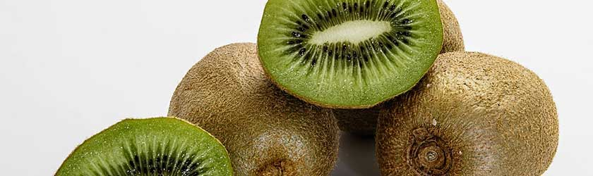 what fruits can dogs eat kiwi fruit facts