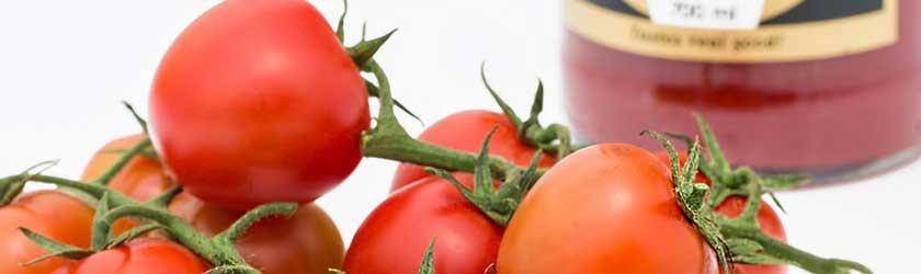 Can Guinea Pigs Eat Tomato Puree?