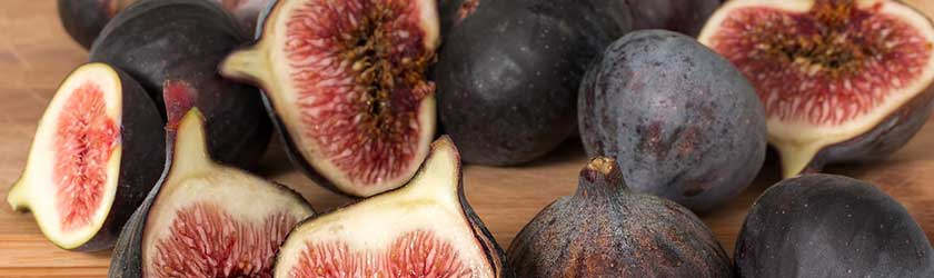 Can Rabbits Eat Figs?