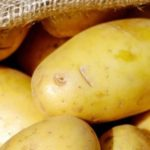 Can Rabbits Eat Potatoes?