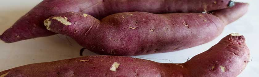 Can Dogs Eat Raw Sweet Potatoes?