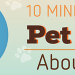 10 Mind Blowing Pet Facts About Dogs