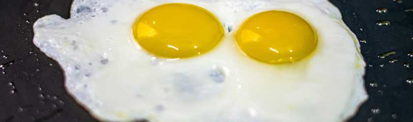 Can Dogs Eat Fried Eggs