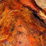 Can Chinchillas Eat Turkey