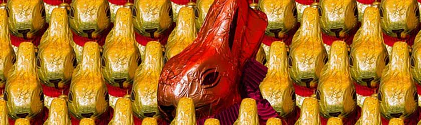 Can Dogs Eat Easter Bunnies?
